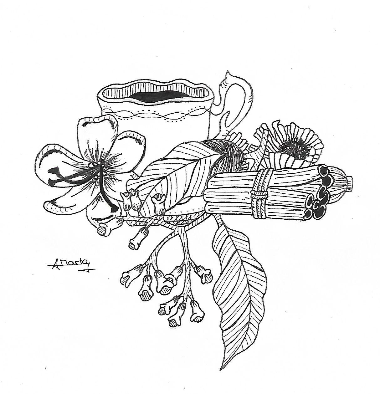 Láudano, dibujo realizado por Marta Adelantado