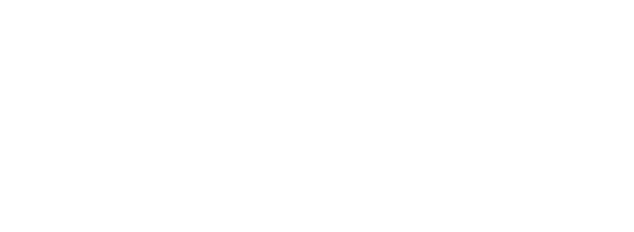 logo The Journey of Elisa